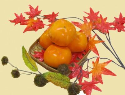 秋の味覚!東郷の柿!