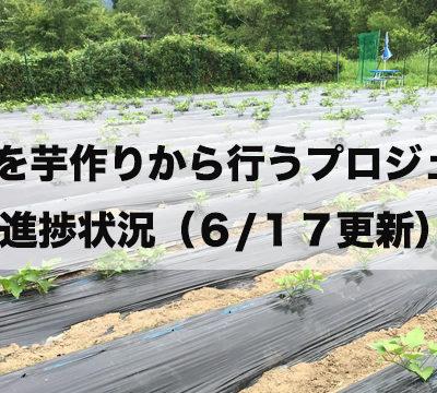 焼酎を芋作りから行うプロジェクト始まりました!(6/17更新)