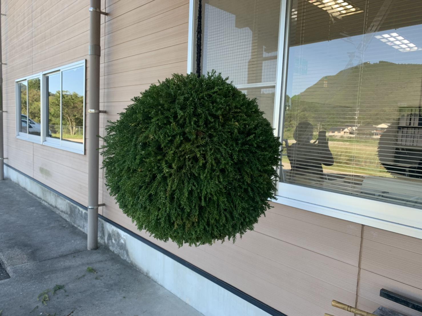 杉玉作り14