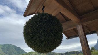 【杉玉作り】意外と簡単にできる杉玉の作り方を解説します【動画説明】