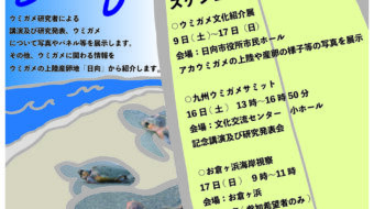 九州ウミガメサミットin日向